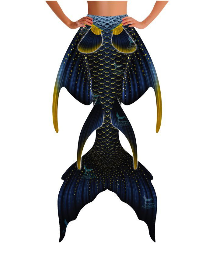 French Angelfish Whimsy Tail