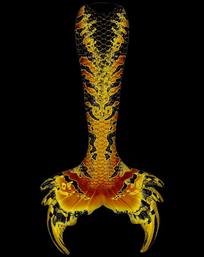 Hidden Dragon Whimsy Fantasea Tail