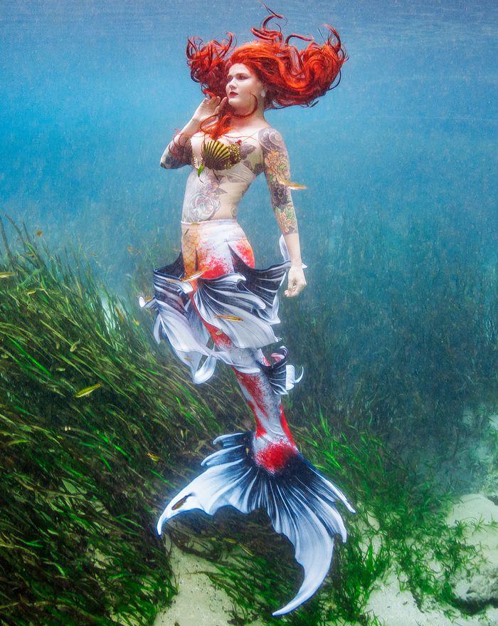 Sanke Butterfly Koi Whimsy Fantasea Mermaid Tail